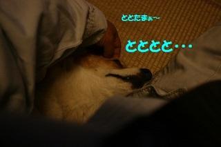s20110419_0302.jpg