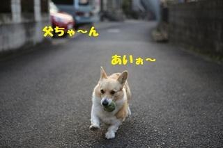 sIMG6_2013_03_07_9999_14.jpg