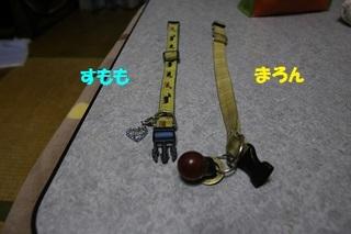 sIMG6_2014_01_22_9999_9.jpg